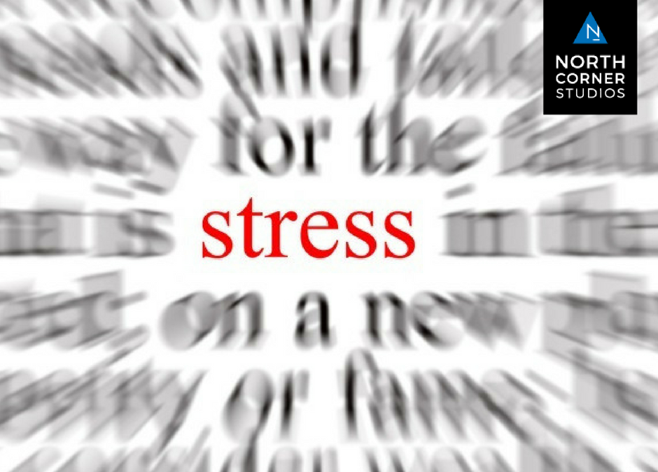 Stress 101: What It's Really Doing to Your Mind and Body